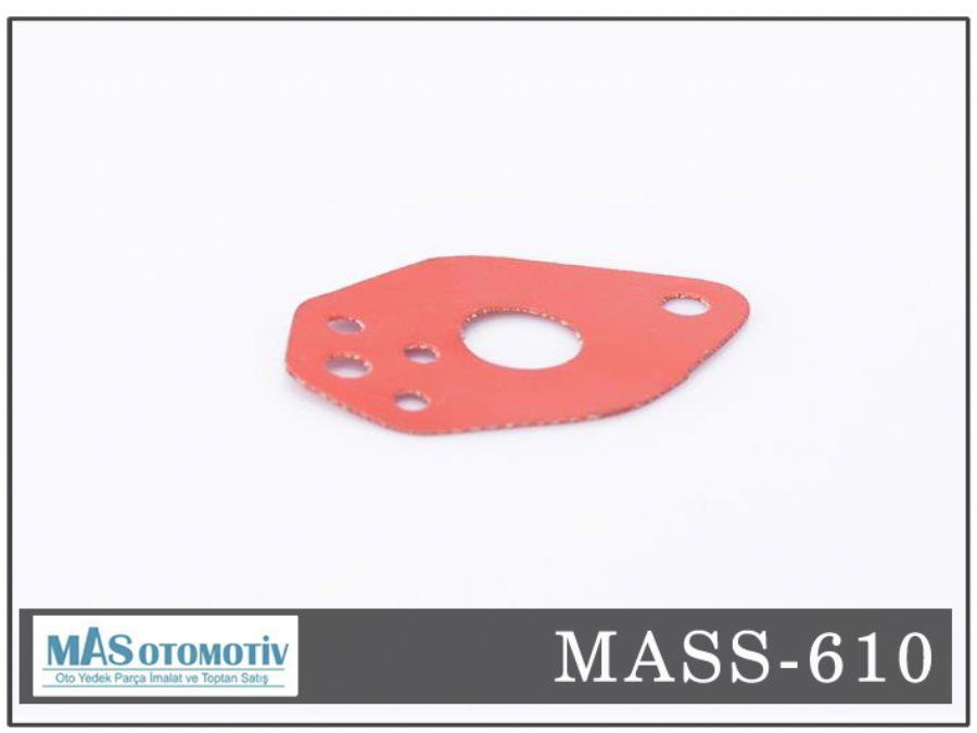 MASS 610